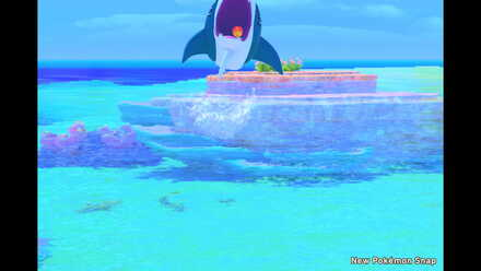 New Pokemon Snap Feed Sharpedo Bully of the Sea.jpeg