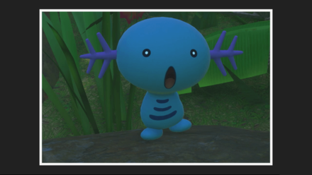 Wooper 2 Star Photo