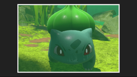 Bulbasaur 1 Star Photo