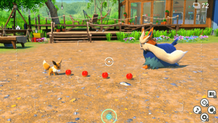 Lead Eevee to the Center of the Camp.png