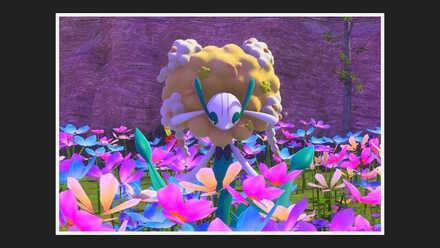 Florges 1 Star Photo