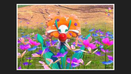 Florges 2 Star Photo