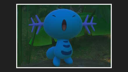 Wooper 3 Star Photo