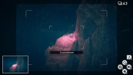 New Pokemon Snap - Illumina Spot (Lental Seafloor) Crystabloom2