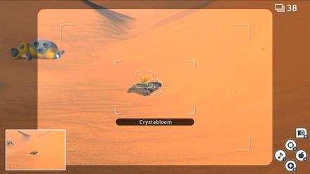Sands (Day) - Crystabloom 4.png